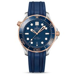 Diver 300m Co Axial Master Chronometer 42 mm